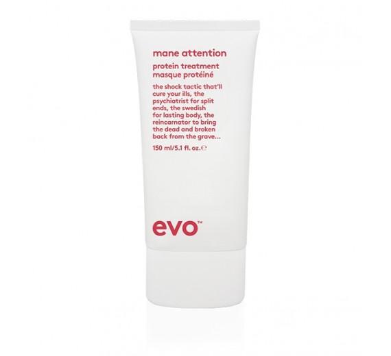 Evo Mane Attention Protein Treatment