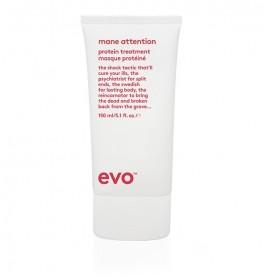 Evo Mane Attention Protein Treatment-20